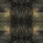 kaleidoscope 2.8